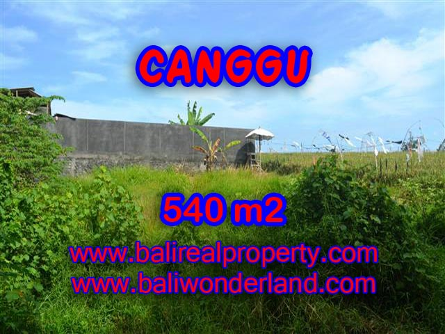 Land for sale in Bali, astonishing view in Canggu Bali – TJCG131