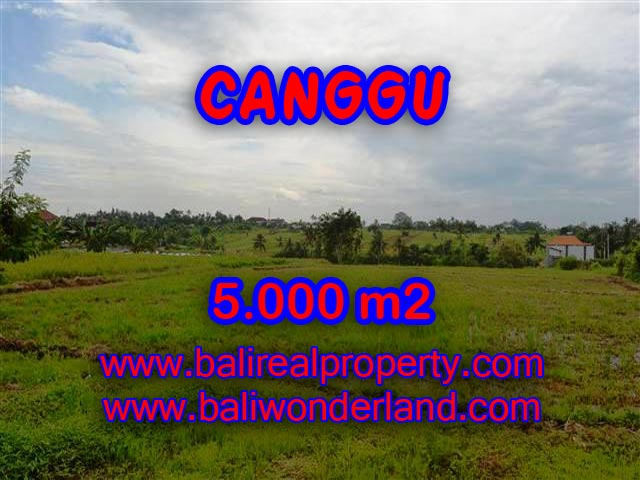 Land in Bali for sale, astounding view in Canggu Bali – TJCG132
