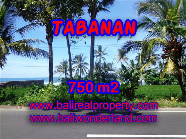 Magnificent Land for sale in Bali, Ocean and ricefields view in Tabanan Selemadeg Bali – TJTB105