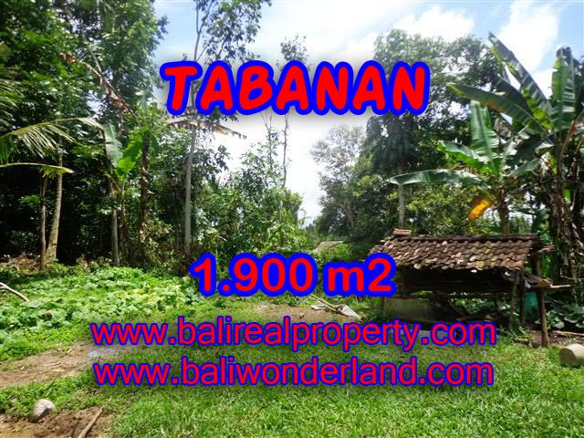 Land for sale in Tabanan Bali, Great view in Tabanan Penebel – TJTB091