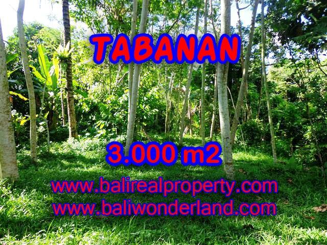 Land in Bali for sale, fantastic view in Tabanan Bali – TJTB109