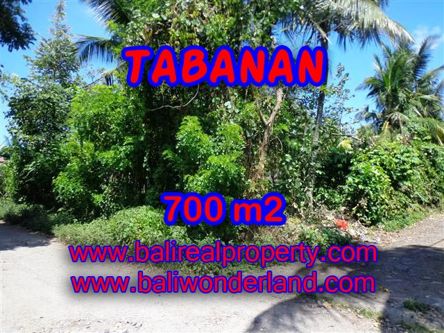 Land in Bali for sale, extraordinary view in Tabanan – TJTB107