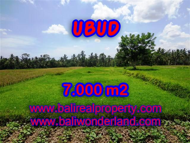 Property in Bali for sale, Astonishing land for sale in Ubud Bali – TJUB381