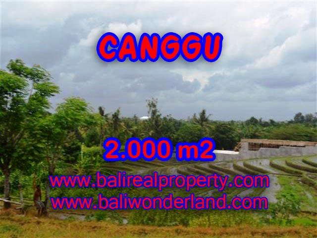 Land in Bali for sale, attractive view in Canggu Babakan Bali – TJCG133