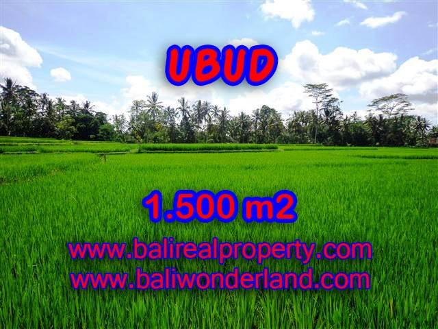 Attractive Property for sale in Bali, land for sale in Ubud  – TJUB383