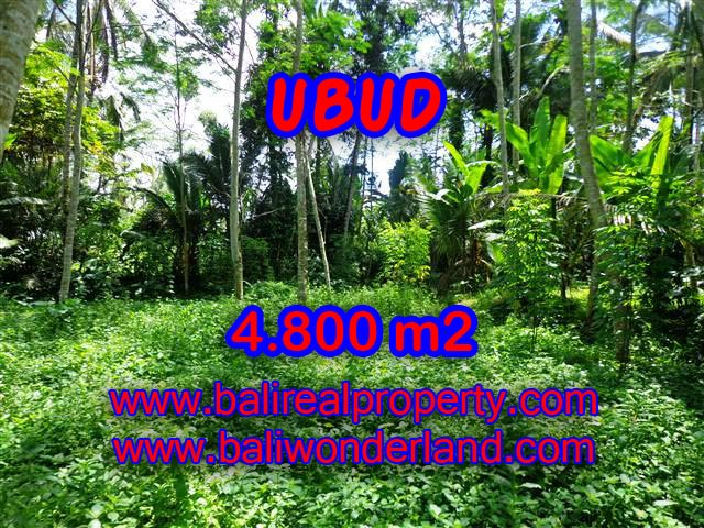 Astounding Property in Bali for sale, green lush view by the creek land in Ubud Bali – TJUB382