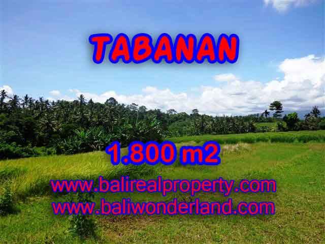 Land for sale in Bali, exceptional view in Tabanan Selemadeg – TJTB106