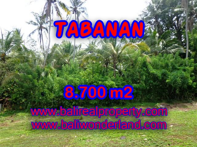 Stunning Land for sale in Bali, Garden and river view in Tabanan Bali - TJTB115