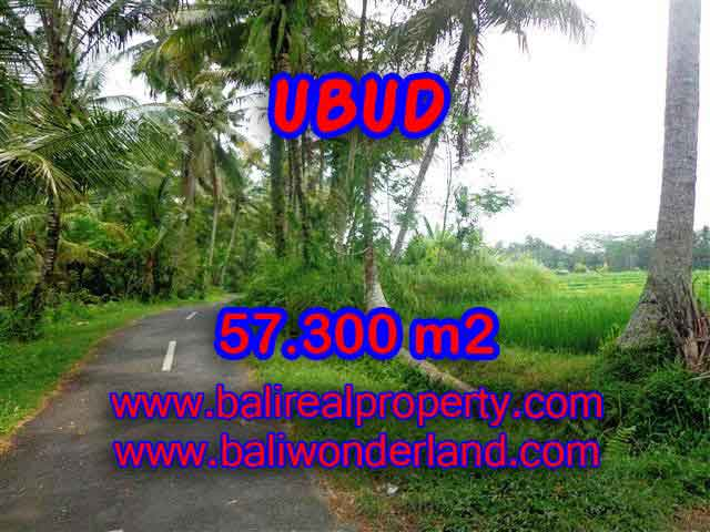 Outstanding Property in Bali for sale, land in Ubud for sale – TJUB377