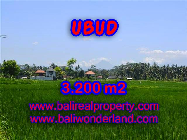 Fantastic Property for sale in Bali, land sale in Ubud Bali – TJUB385