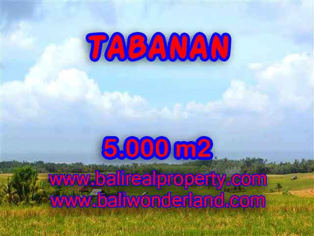 Magnificent Property in Bali, Land for sale in Tabanan Bali – 5.000 m2 @ $ 85