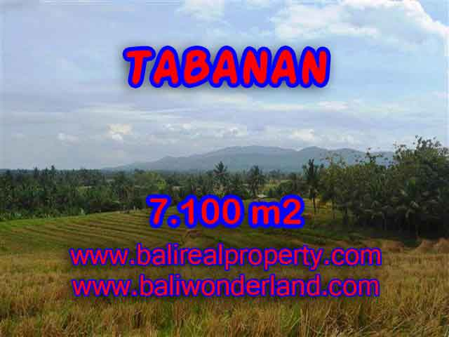 Exceptional Property in Bali, Land in Tabanan Bali for sale – 7.100 m2 @ $ 85