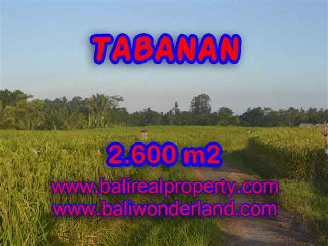 Astounding Property in Bali for sale, rice fields, mountain and ocean view land in Tabanan Bali – TJTB129