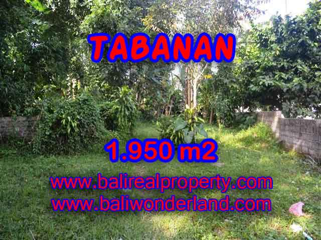 Property sale in Bali, Beautiful land in Tabanan for sale – TJTB130