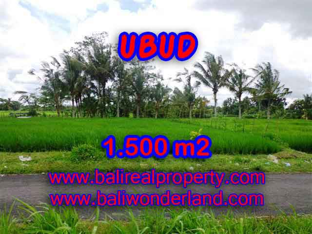 Land for sale in Bali, Outstanding property in Ubud Bali – 1.500 m2 @ $ 85