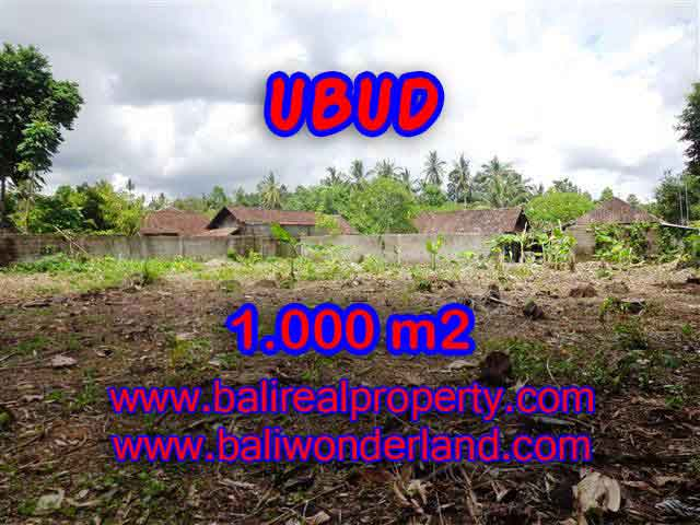 Excellent Property for sale in Bali, land for sale in Ubud Bali  – 1.000 m2 @ $ 485