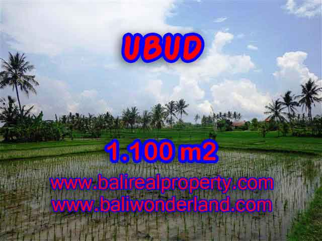 Wonderful Property in Bali for sale, land in Ubud Bali for sale – TJUB376