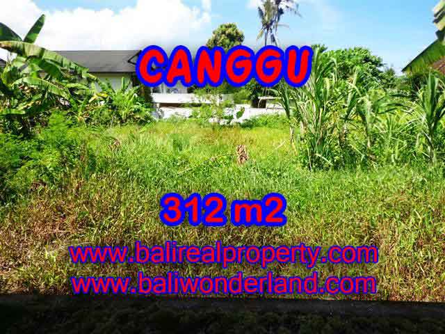 Land for sale in Bali, magnificent view Canggu Bali – TJCG145