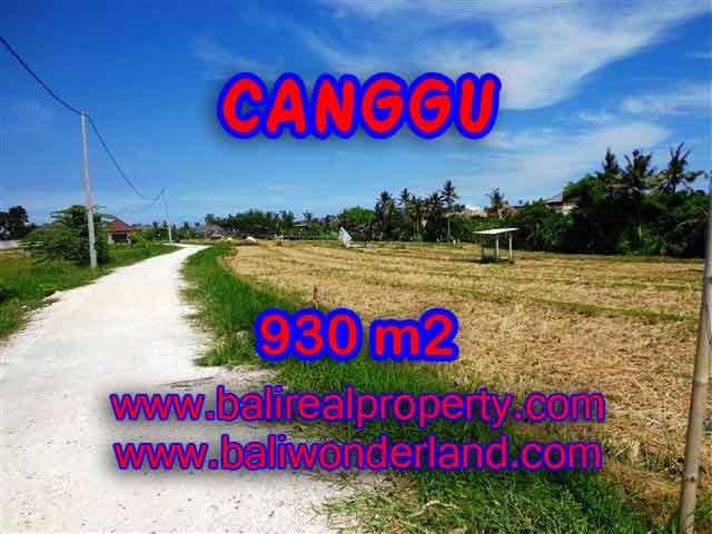Land for sale in Bali, wonderful view in Canggu Bali – TJCG146