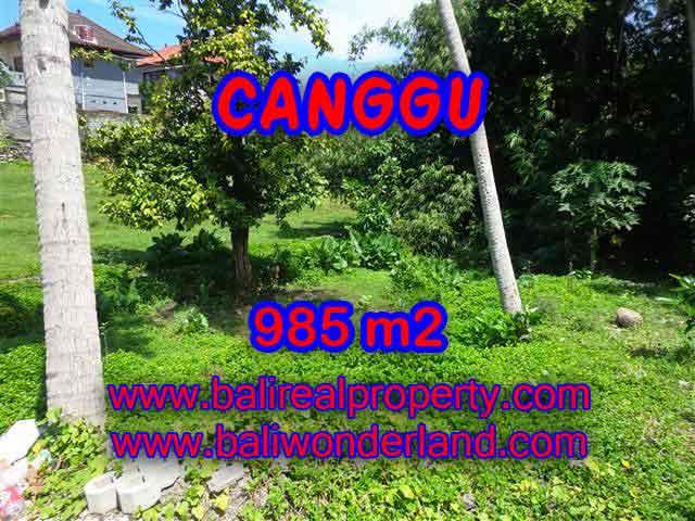 Land in Bali for sale, great view in Canggu Bali – TJCG147