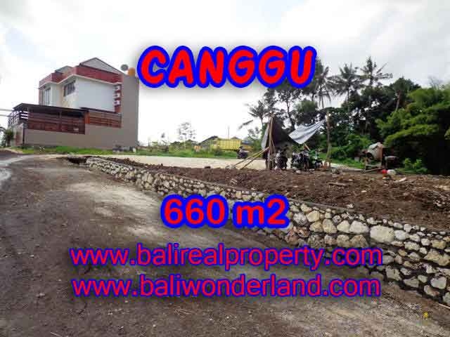 Beautiful Land for sale in Bali, Rice fields and river view  in Canggu Bali – TJCG149