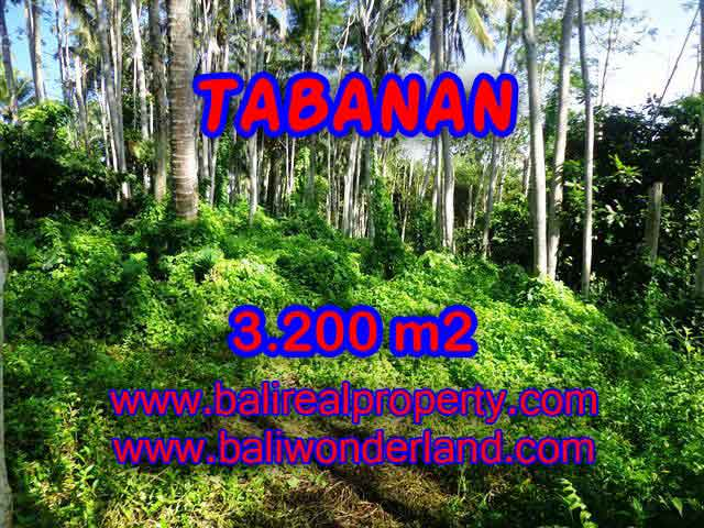 Beautiful Land for sale in Bali, Mountain and ricefields and river view in Tabanan Bali – TJTB120