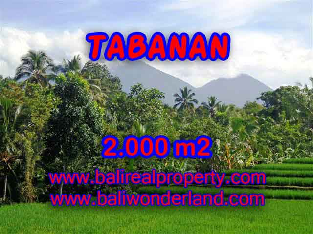 Astonishing Property for sale in Bali, LAND FOR SALE IN TABANAN Bali – TJTB121