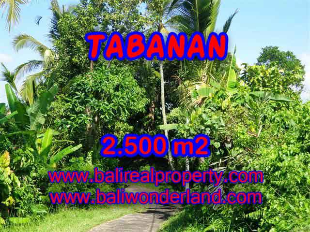 Outstanding Property for sale in Bali, land for sale in Tabanan Bali – TJTB122
