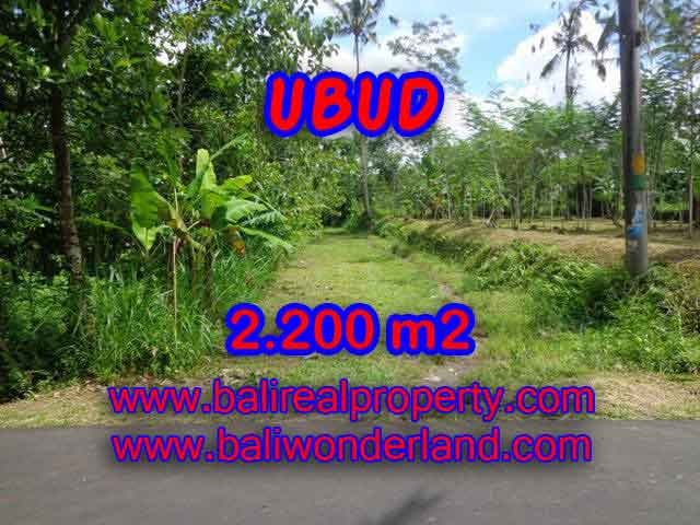 Interesting Land for sale in Ubud Bali, Garden view in Ubud Tegalalang– TJUB408