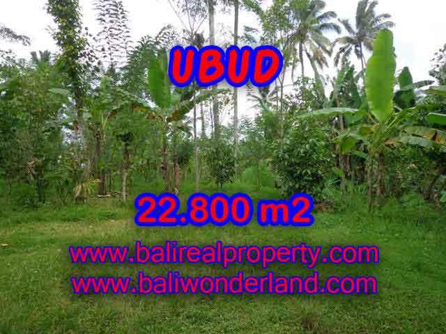 Land for sale in Ubud Bali, Wonderful view in Ubud Tegalalang – TJUB409