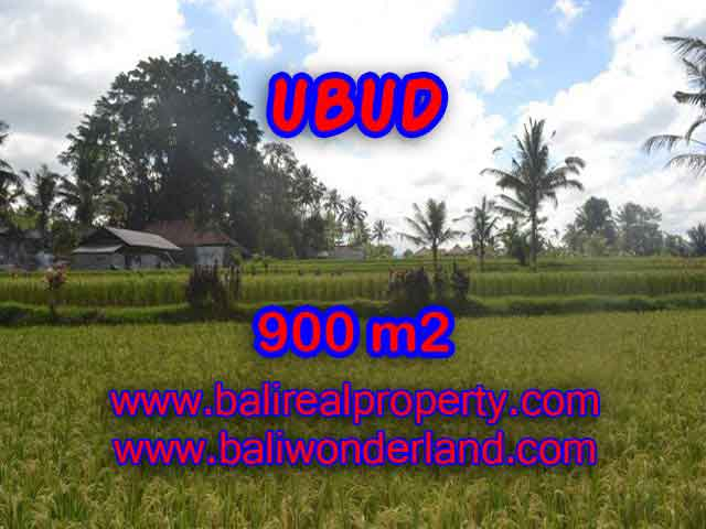 Land in Ubud for sale, Outstanding view in Ubud Tegalalang Bali – TJUB412