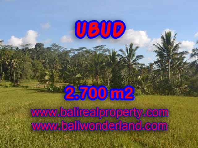 Land for sale in Bali, amazing view in Ubud Payangan – TJUB414