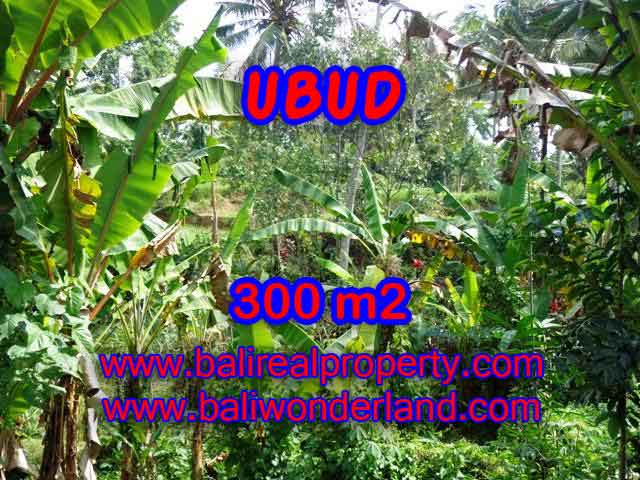 Land for sale in Bali, astonishing view in Ubud Center Bali – TJUB415