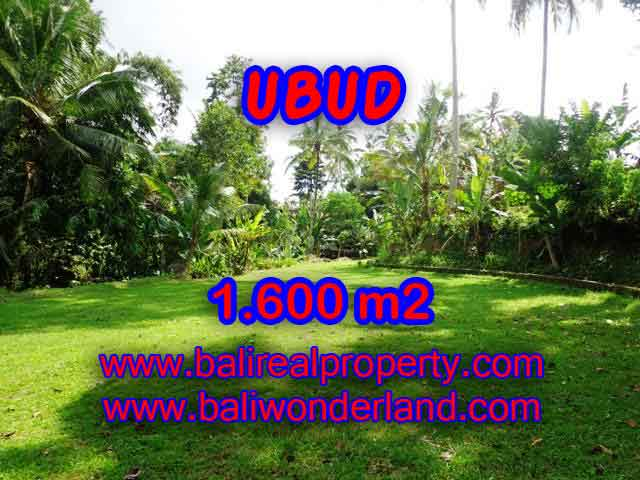 Land in Bali for sale, astounding view in Ubud Bali – TJUB416