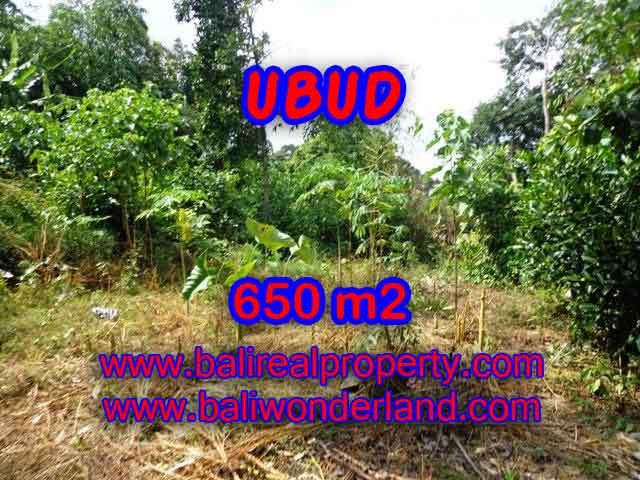 Land in Bali for sale, attractive view in Ubud Center Bali – TJUB417