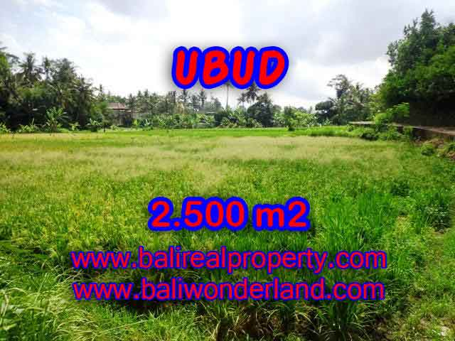 Magnificent Land for sale in Bali, Rice Paddy view in Ubud Center Bali – TJUB418