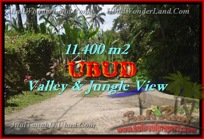 Land in Bali for sale, great view in Ubud Bali – TJUB431