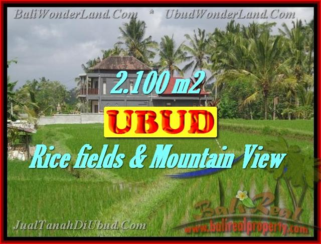 Fantastic Land for sale in Bali, Rice fields & Mountain View in Ubud Tegalalang– TJUB423