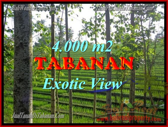 Land in Tabanan Bali for sale, nice view in Tabanan Penebel Bali – TJTB150
