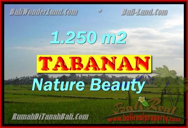 Land in Tabanan Bali for sale, nice view in Tabanan kediri Bali – TJTB148