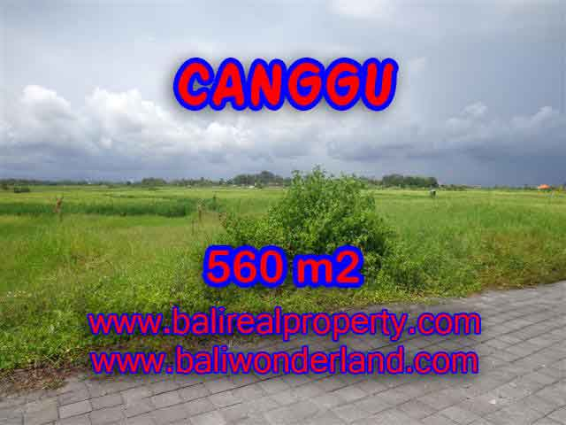 Land in Bali for sale, fantastic view in Canggu Bali – TJCG138