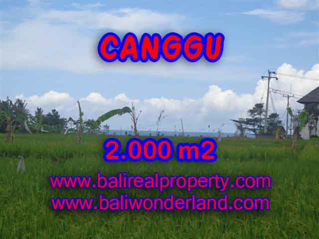 Land for sale in Bali, Fantastic view in Canggu Cemagi – TJCG140