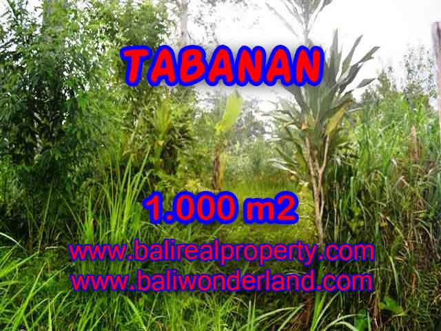 Land in Bali for sale, attractive view in Tabanan Luwus Bali – TJTB104