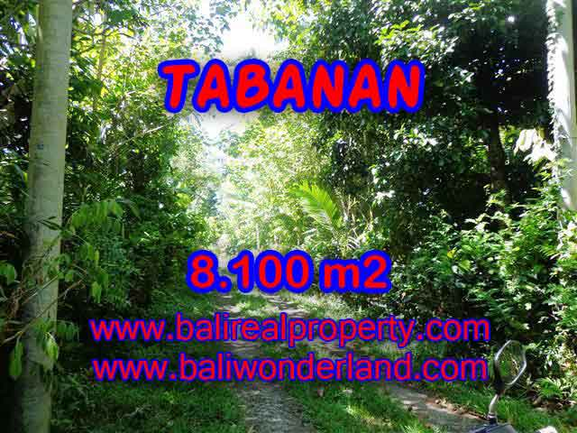 Land in Bali for sale, Stunning view in Tabanan Bali – TJTB113