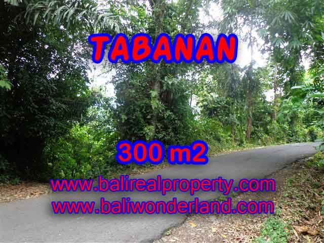 Land for sale in Bali, magnificent view Tabanan Bali – TJTB116
