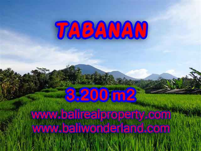Land in Bali for sale, great view in Tabanan Bali – TJTB118