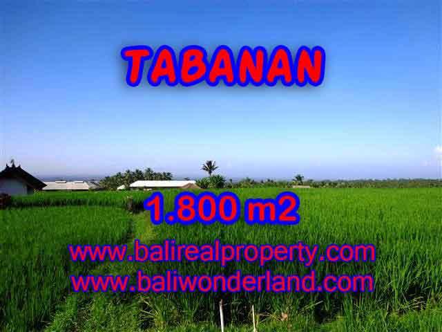 Amazing Land in Bali for sale in Tabanan Penebel Bali – TJTB119