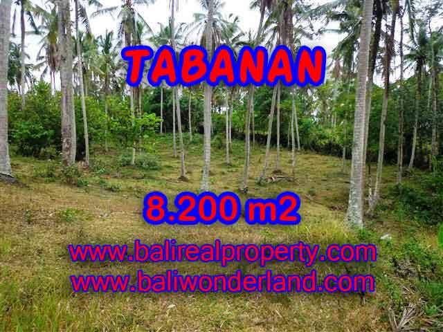 Land for sale in Tabanan Bali, Astounding view in Tabanan selemadeg – TJTB142