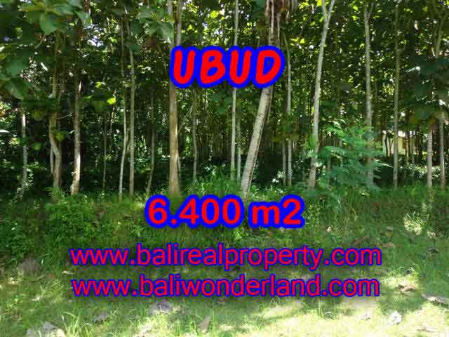 Land in Ubud Bali for sale, nice view in Ubud Payangan Bali – TJUB401