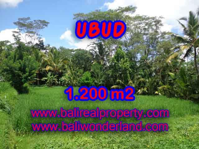 Land for sale in Ubud Bali, Great view in Ubud Payangan – TJUB404